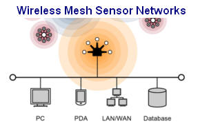 Wireless Mesh Sensor Networks